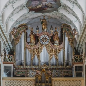 Orgel in der Stiftskirche © Michael Rieß