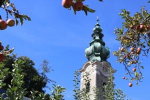 Stiftskirche Äpfel Klostergarten © Erzabtei